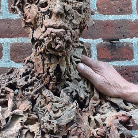 Skulptur in Bissee 2021